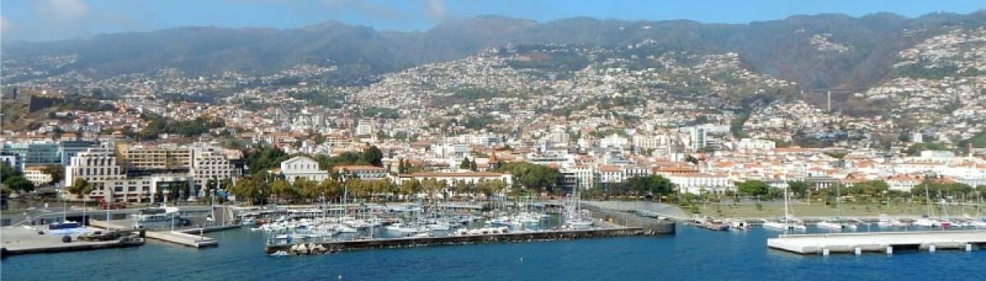 Properties in Funchal